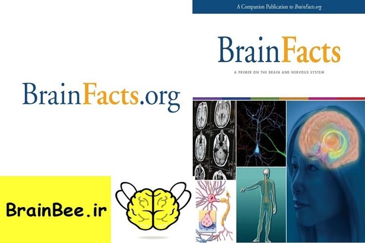 کتاب حقایق مغز یکی از منابع مسابقات جهانی دانش مغز (Brain Bee) می باشد