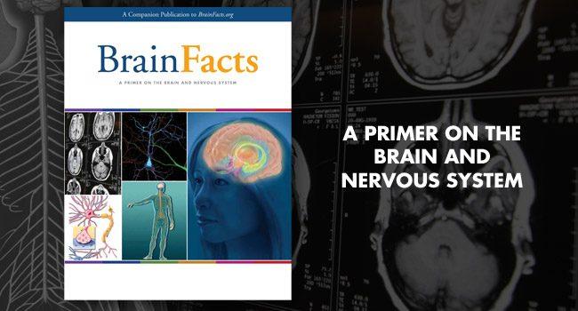 دانلود کتاب حقایق مغز