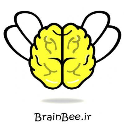 brainbee.ir