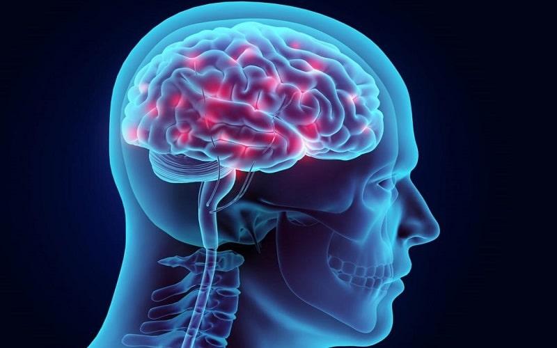 بیماری صرع یک بیماری پیچیده است که می تواند فعالیت الکتریکی سیستم عصبی را مختل کند.